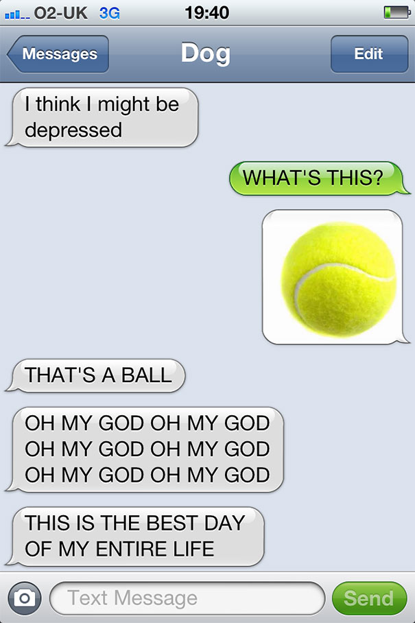 texts-from-dog-23