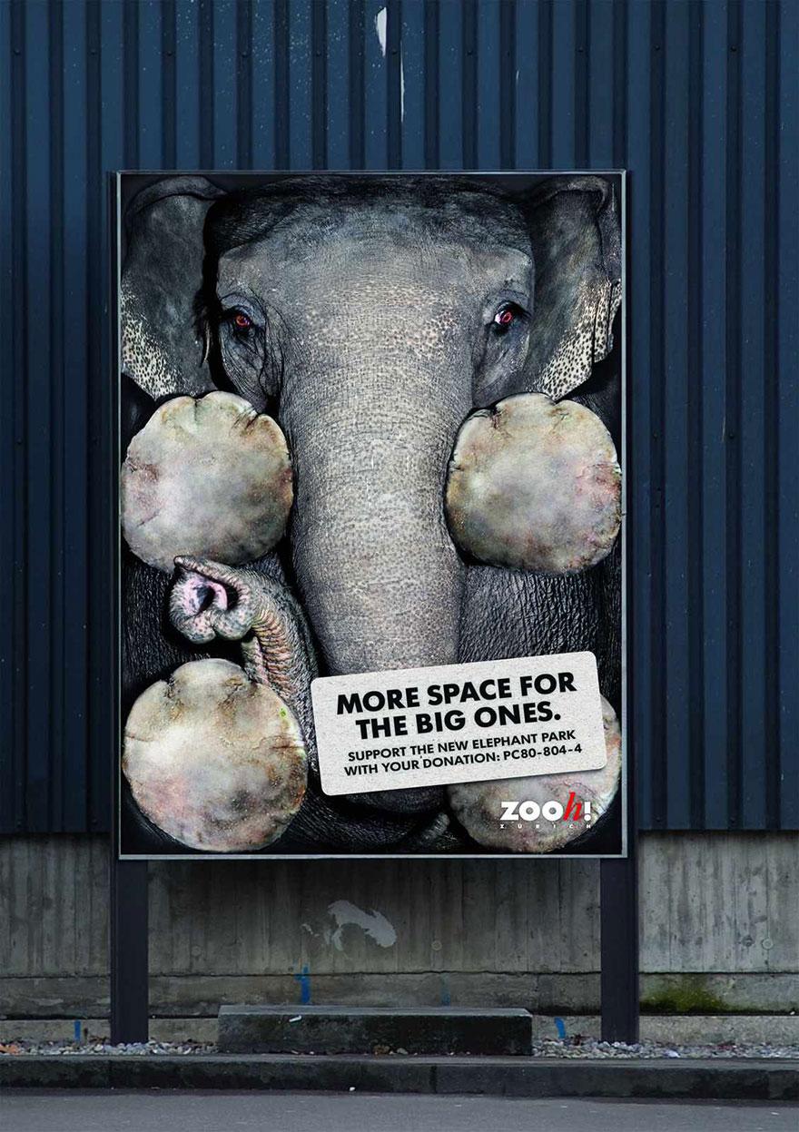 public-social-ads-animals-47