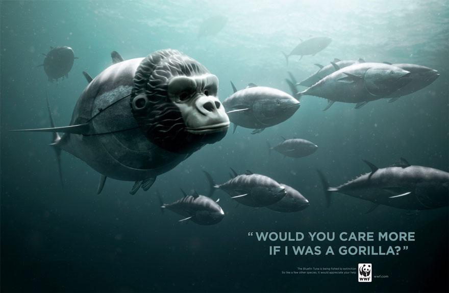 public-social-ads-animals-53