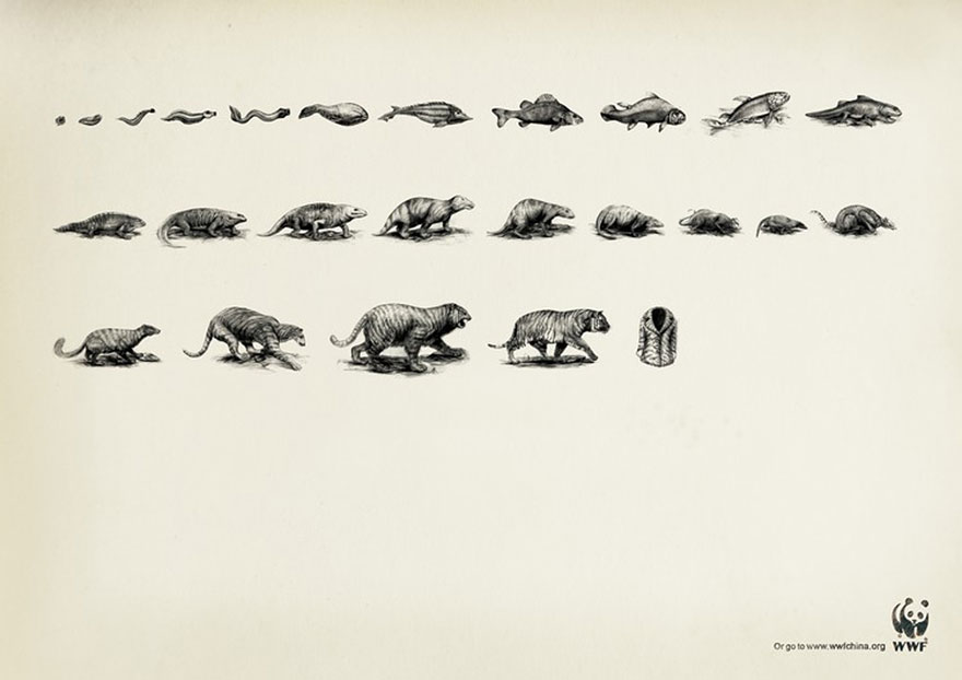 public-social-ads-animals-56