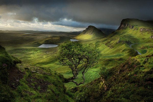 reasons scotland
