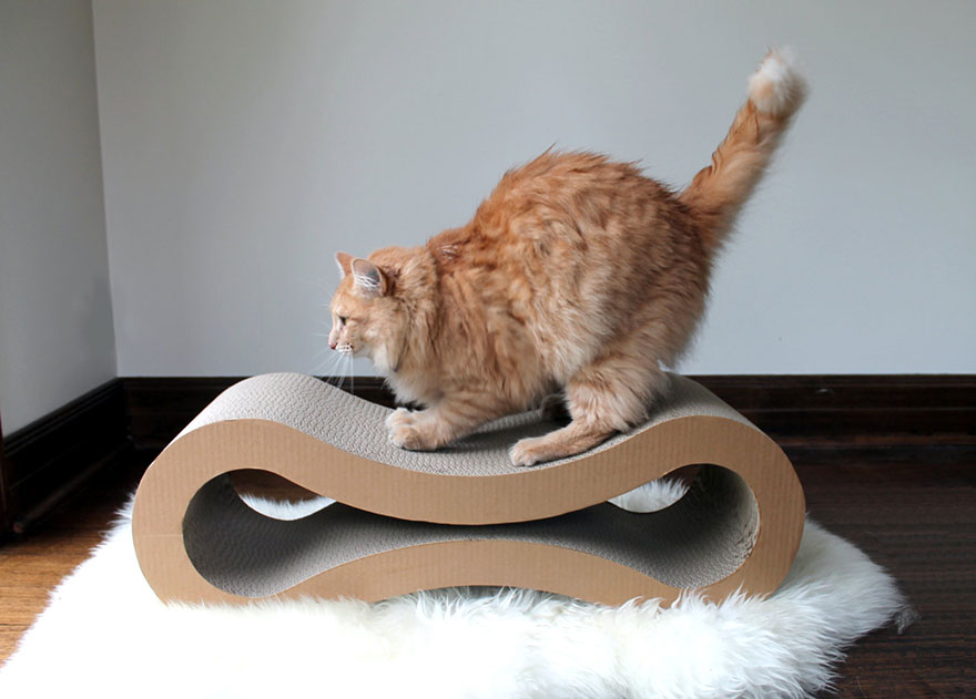 ikea egg chair high back vinyl 25 awesome furniture design ideas for cat lovers | bored panda