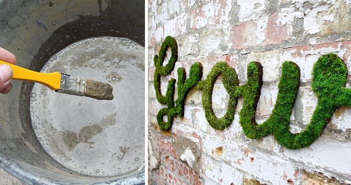 Moss Graffiti The Coolest DIY Project Ever  Bored Panda