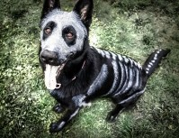 Pet Owners Use Non-Toxic Face Paint To Turn Their Animals ...