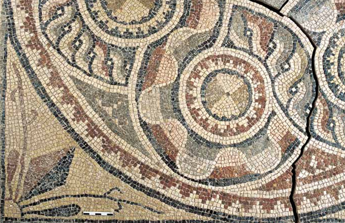2000YearOld Mosaics Uncovered In Turkey Before Being