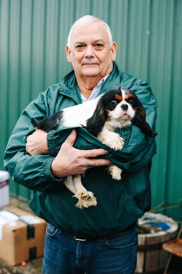 cavalier-king-charles-cocker-spaniel-rescue-puppy-mill-auction-9