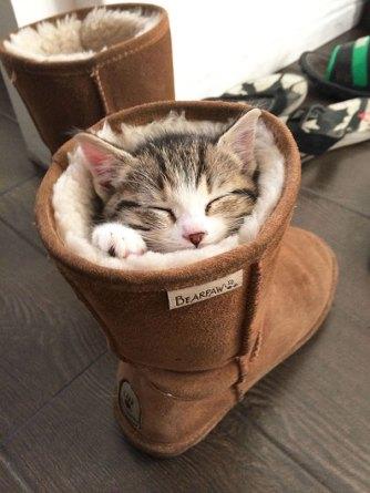 You Can't Go Outside, I Sleeps Here