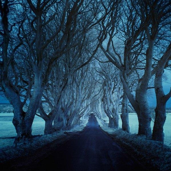 Dark Beautiful Landscape Road