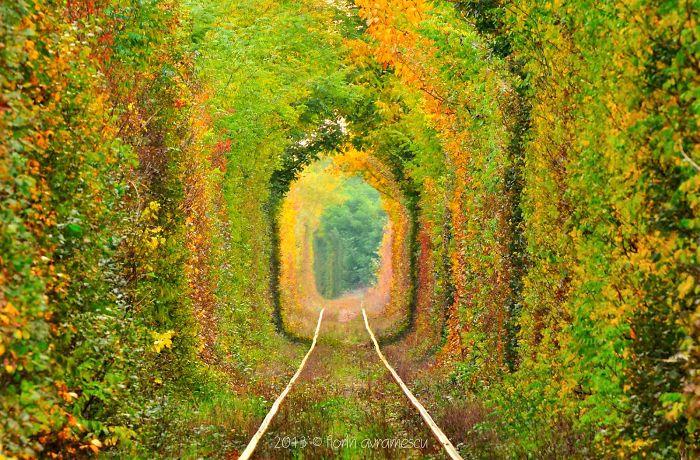 Tunnel Of Love, Romania, Caras-severin