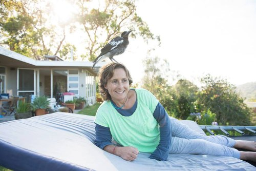 penguin-magpie-rescue-friendship-bloom-family-australia-2
