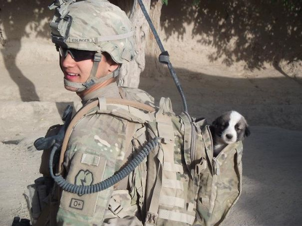 Soldier With His Rescued Puppy