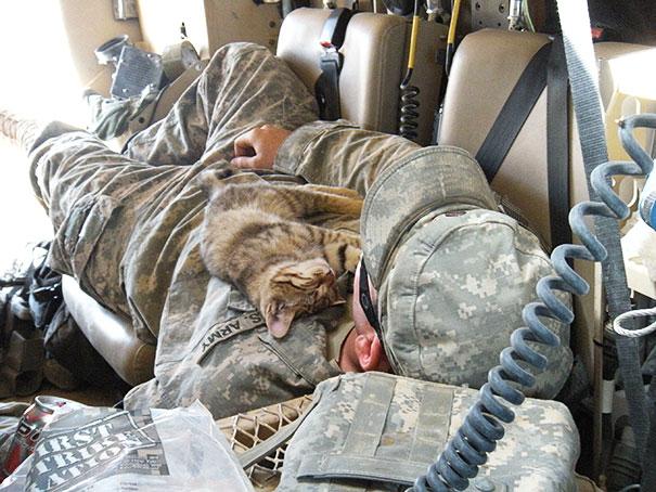 Stray Kitten Sleeping On My Buddy, Afghanistan 2009
