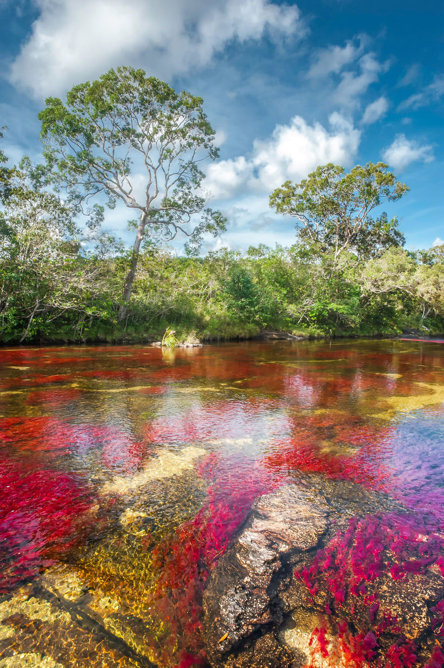 World Most Beautiful Rivers In Colombia