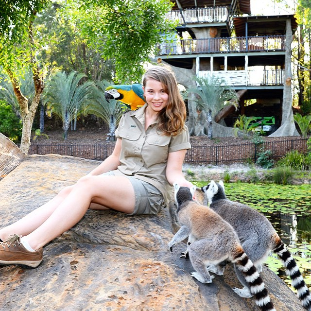 16-year-old-bindi-irwin-crocodile-hunter-fathers-legacy-australia-zoo-9