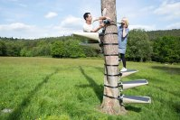You Can Strap This Spiral Staircase Onto Any Tree Without ...