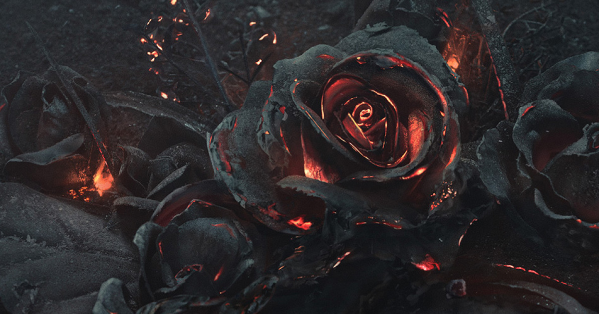 Active Wallpaper Iphone X We Created A Bouquet Of Burning Roses Bored Panda