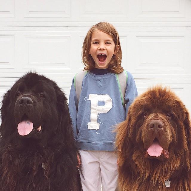 mom-photographs-son-dogs-horse-friendship-stasha-becker-julian-74