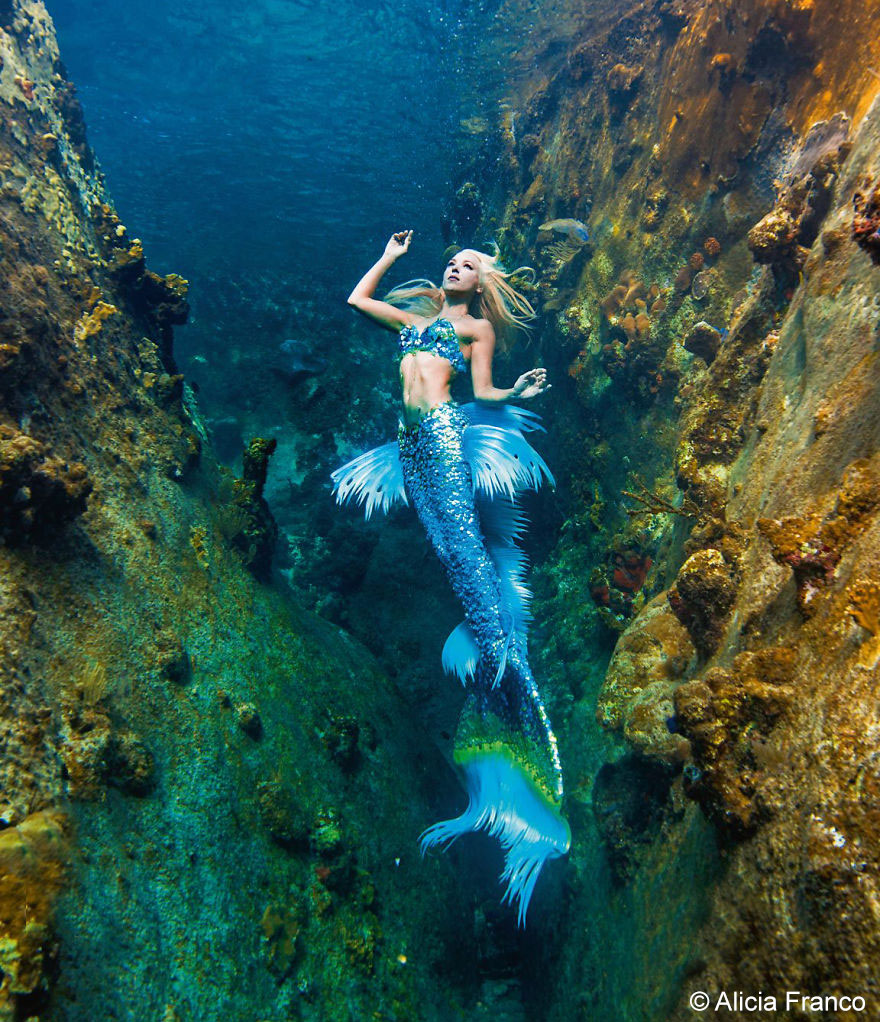 Cute Algae Wallpaper A Real Life Mermaid Who Swims With Sharks Using Her Fish