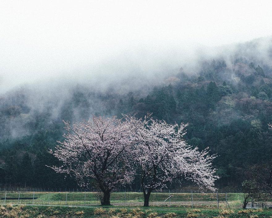 everyday-street-photography-takashi-yasui-japan-3