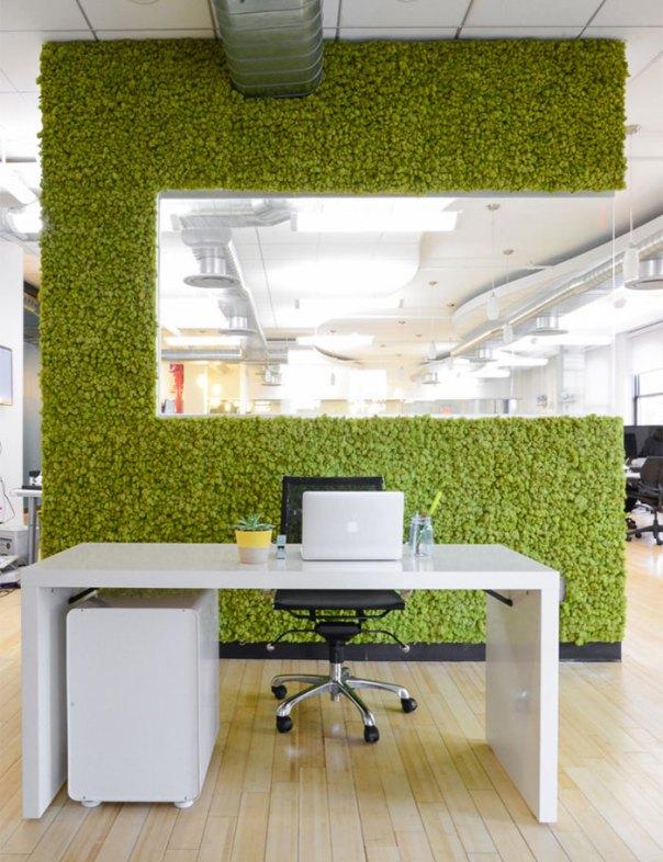 Moss Office Wall