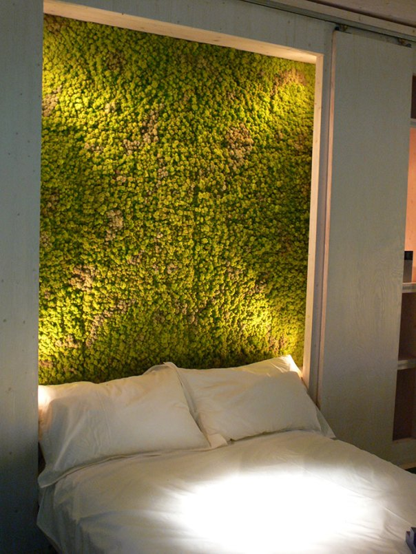Moss Wall In The Bedroom