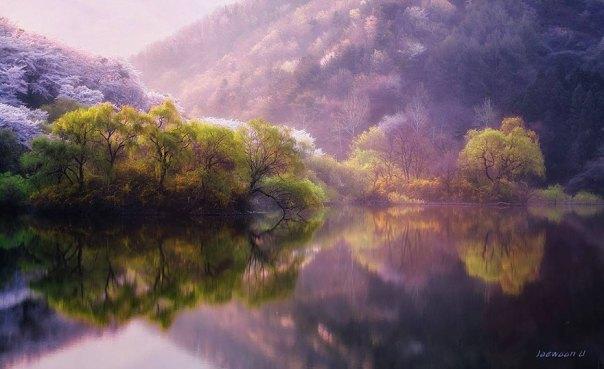 reflexión-paisaje-fotografía-jaewoon-u-2