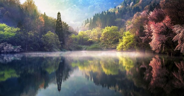 reflexión-paisaje-fotografía-jaewoon-u-37