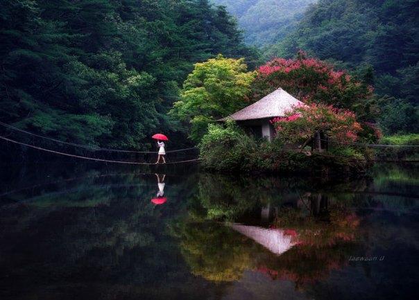 reflexión-paisaje-fotografía-jaewoon-u-38