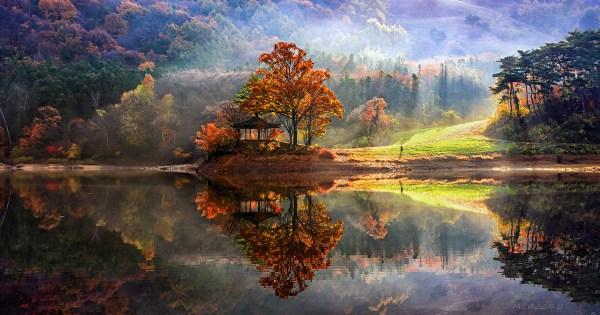 stunning reflected landscapes capture