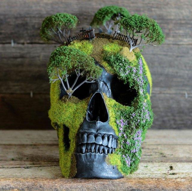 bonsai-skull-tree-jack-dust-32