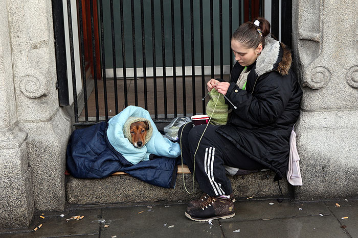 Homeless Woman With Her Dog In Dublin