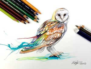 drawings pencil animals marker drawing owl katy lipscomb animal artist barn colorful wild lucky978 draw illustrations colored boredpanda inspiring works