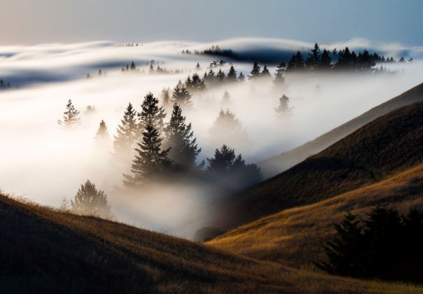 Fog Rolling In, Marin County, California