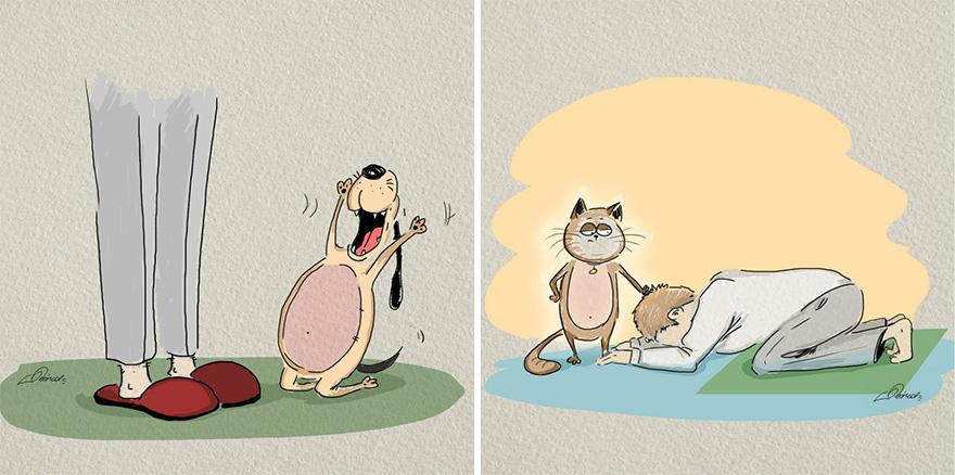 gatos-vs-cães-funny-ilustrações-bird-nascido de 6