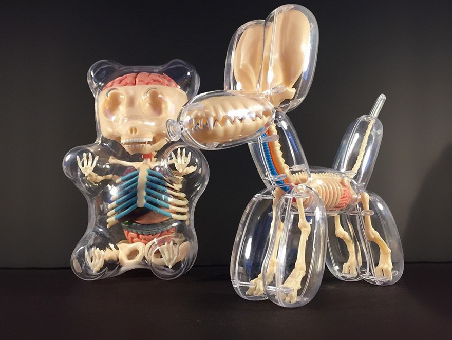 anatomical-balloons-dog-bear-jason-freeny-3