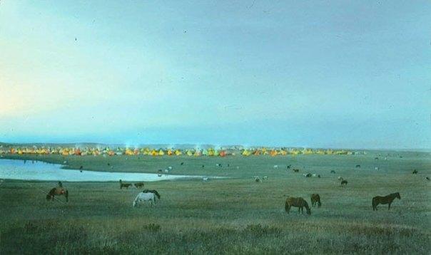 Campo tribal blackfeet Con Pasto de caballos.  Montana.  Principios de 1900.  Vidrio diapositiva de linterna por Walter Mcclintock