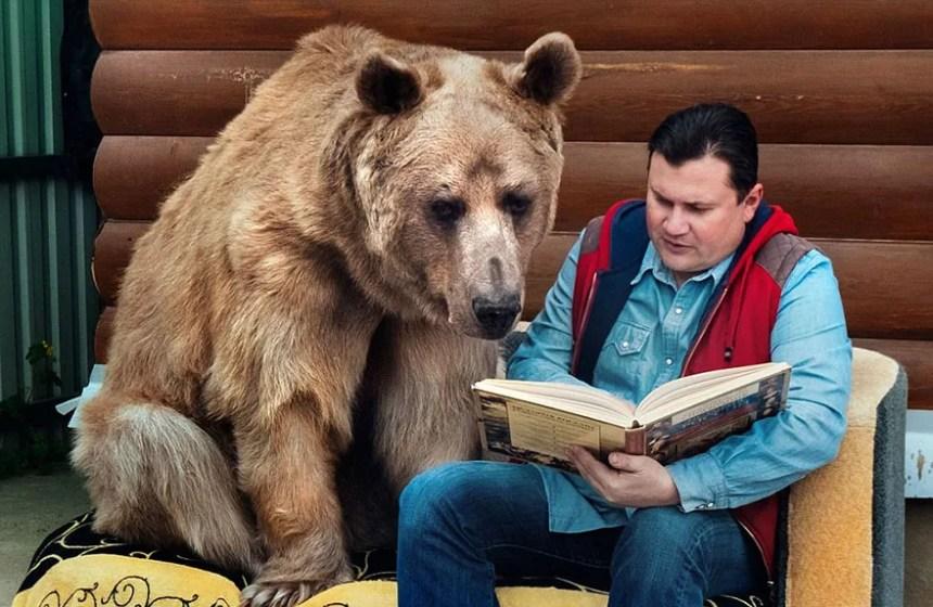 adottato-bear-russo-famiglia-Stepan-A2