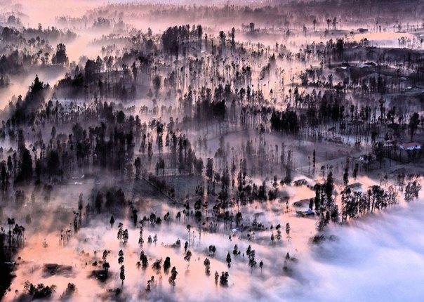 Brumoso en Cemoro Lawang, Indonesia