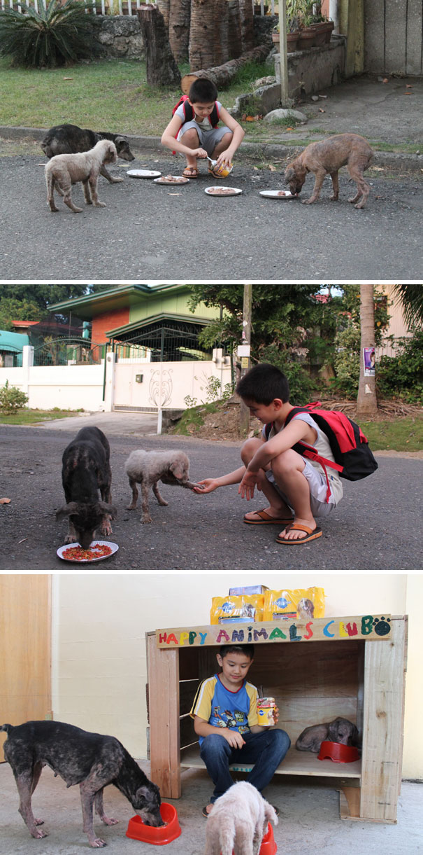 9-Year-Old Boy Created A No-Kill Animal Shelter In His Garage