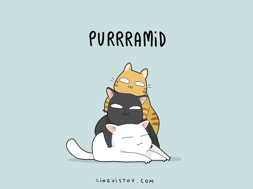 8 Cat Puns That Will Make Your Day Bored Panda