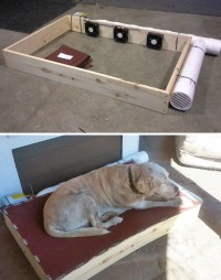 15+ Creative Dog Owners Who Did Pawesome Things For Their ...