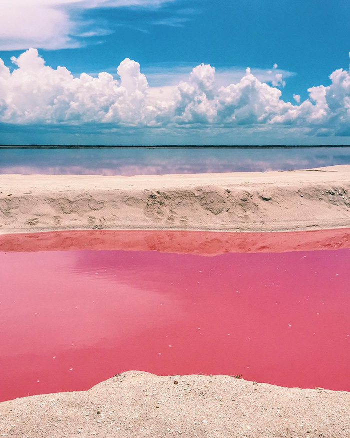 Image result for pink lagoon mexico