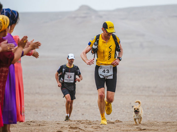 stray-dog-reunited-runner-gobi-dion-leonard-china-5