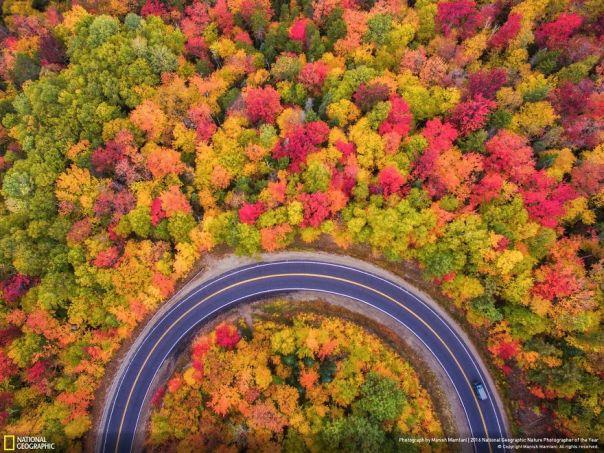 otoño aérea