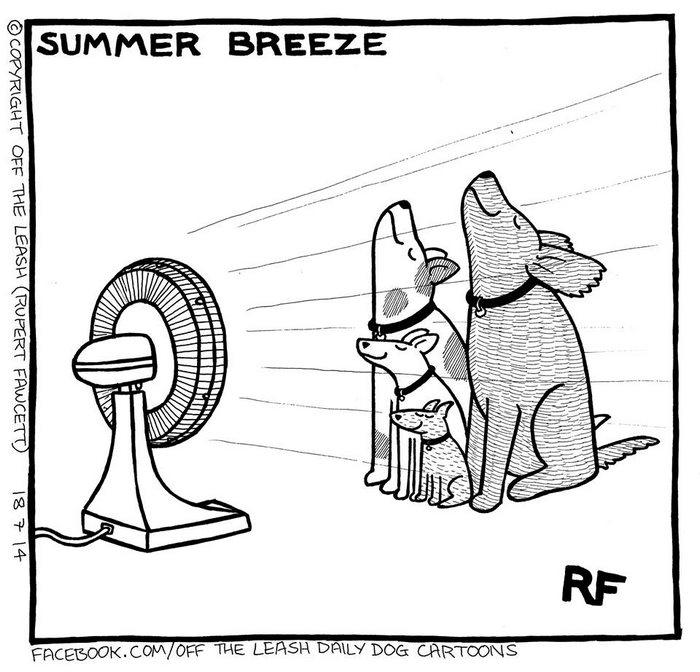 """10+ Hilarious Comics About Life With Dogs By """"Off The"""