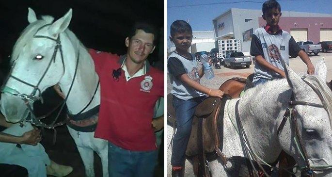 horse-goodbye-owner-funeral-brasil-10