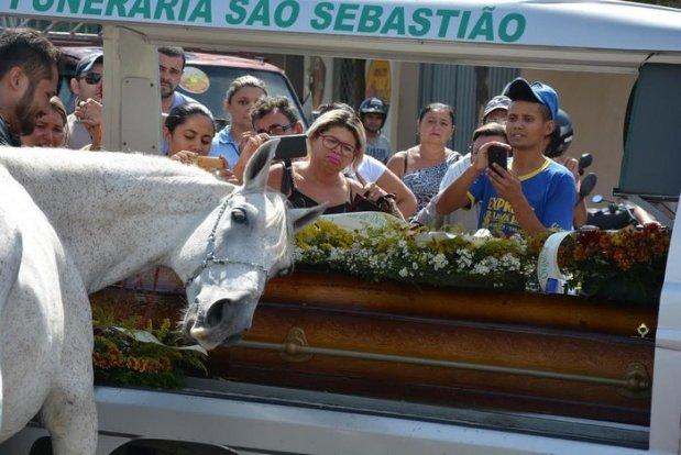 horse-goodbye-owner-funeral-brasil-5