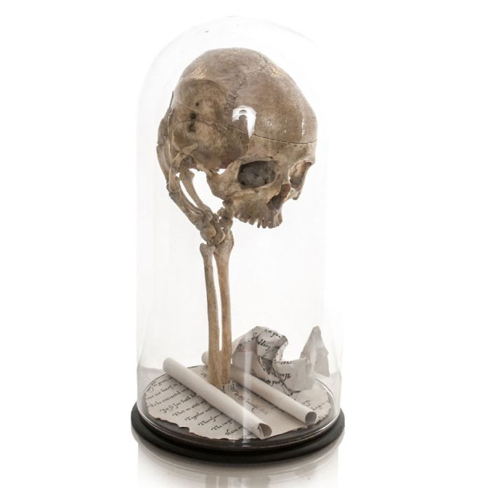 Taking real human bones and giving them a new lease of life 58ada22220f3a  880 - Wow, Seniman Ini Ubah Kerangka Manusia jadi Karya Seni!