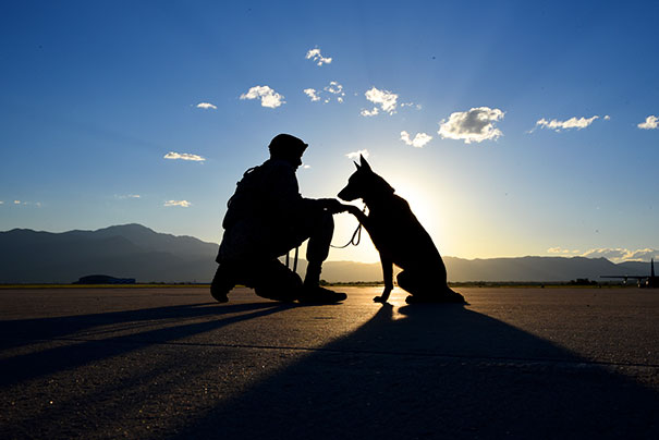 Senior Airman Tariq Russell Shakes The Paw Of His Partner