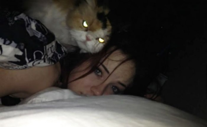 Evil Cats Demons Summoning Satan 138 58d23b1f59e6b  605 - 30+ Photos That Prove Cats Are Actually Demons